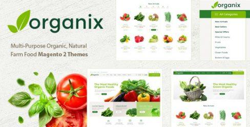 Organix – Minimalist eCommerce Magento 2 Theme – 23497250