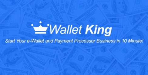 Wallet King – Online Payment Gateway with API – 21170870