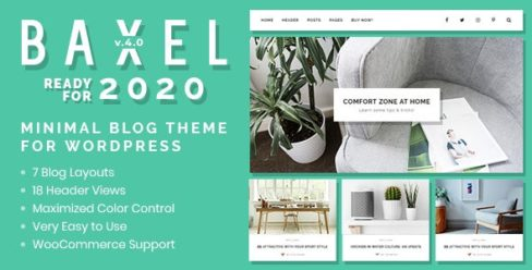 Baxel – Minimal Blog Theme for WordPress – 19822209