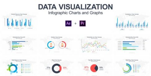 Data Visualization – Infographic Charts and Graphs – 21788304