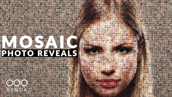 mosaic-photo-reveal-25091535