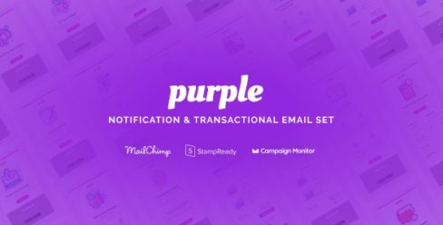 Purple – Notification & Transactional Email Templates – 25564337