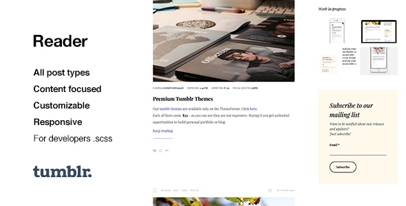 reader-responsive-blogging-tumblr-theme-12930483