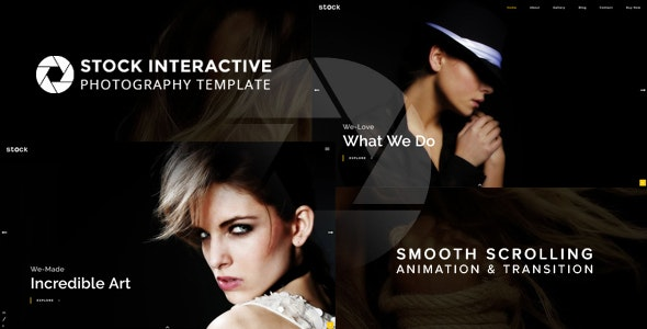 Stock | Interactive Photography Template – 20308825 Free Download