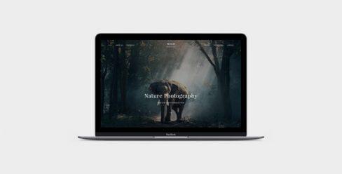WILD – Photographer & Videographer Portfolio Muse Template – 23638316
